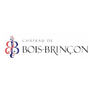 Château de Bois Brinçon logo