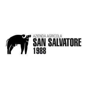 Azienda Agricola San Salvatore logo