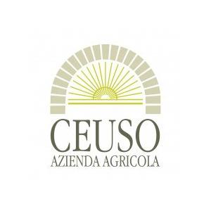 Azienda Agricola Ceuso logo