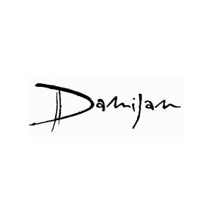 Damijan Podversic logo