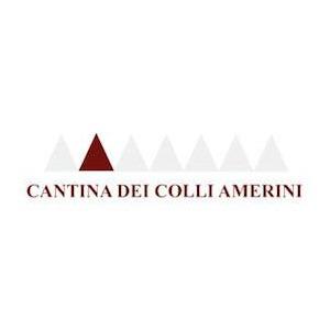 Cantina Sociale Dei Colli Amerini logo